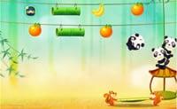 Panda saltatore