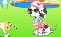 Vestir perro