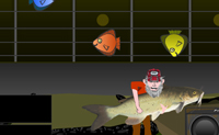 Toca la Guitarra 2