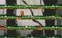 Skoki Małpki