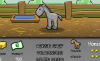 Pferde trainieren