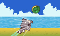 Schildpad Slaan