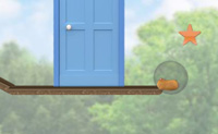 Corrida de Hamsters 5