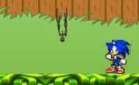 Sonic no Jardim