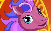 Bella pony da circo