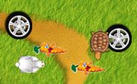 Hase und Schildkröte