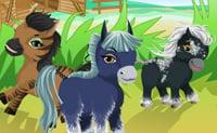 Soigneur de chevaux