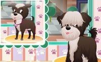 Salón Canino