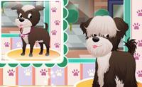 Honden Salon