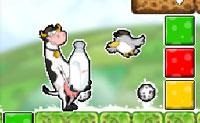 Vogel und Kuh