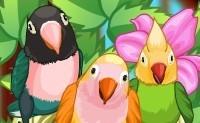 Meu Querido Pássaro