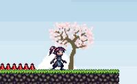 Ninja zburătorul