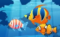 O aquário azul