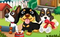 Cães no jardim