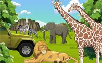 Equipa el parque safari