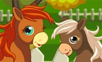 Un maneggio per i cavalli