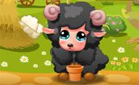 Petit agneau mimi