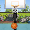 Basketball Pro Games