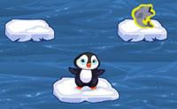 El pingüino saltarín