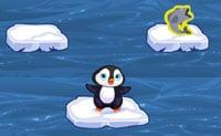 Springende pinguïn