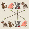 Match the Animal Spiele